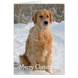 Golden Retriever dog snow holiday Christmas Card