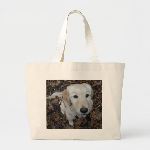Golden Retriever Dog - The Colours Of Fall Tote Bags