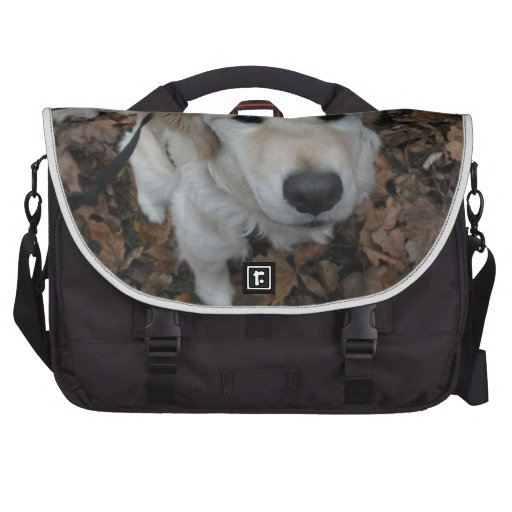 Golden Retriever Dog - The Colours Of Fall Laptop Bags