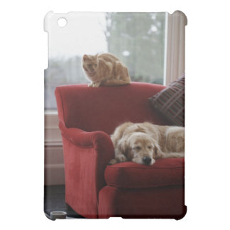 Golden retriever dog with ginger tabby cat cover for the iPad mini