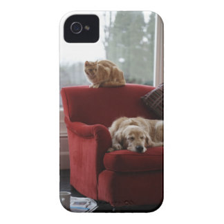 Golden retriever dog with ginger tabby cat iPhone 4 cover
