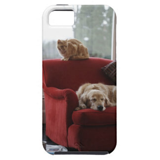 Golden retriever dog with ginger tabby cat iPhone 5 cases