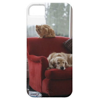 Golden retriever dog with ginger tabby cat iPhone 5 cover