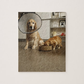 Golden retriever dog with medical collar sitting jigsaw puzzle