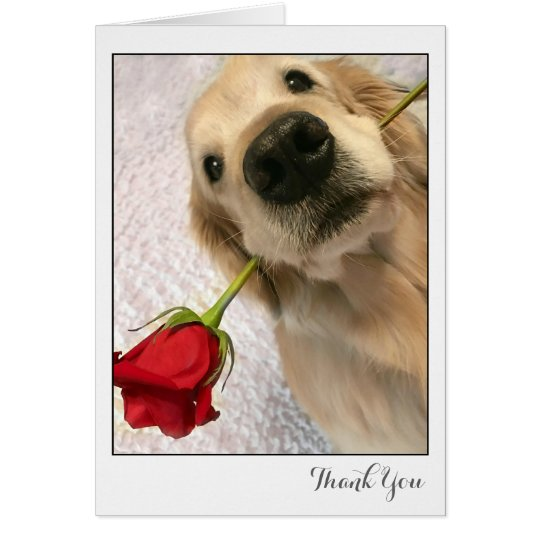 Golden Retriever Dog With Red Rose Thank You Card