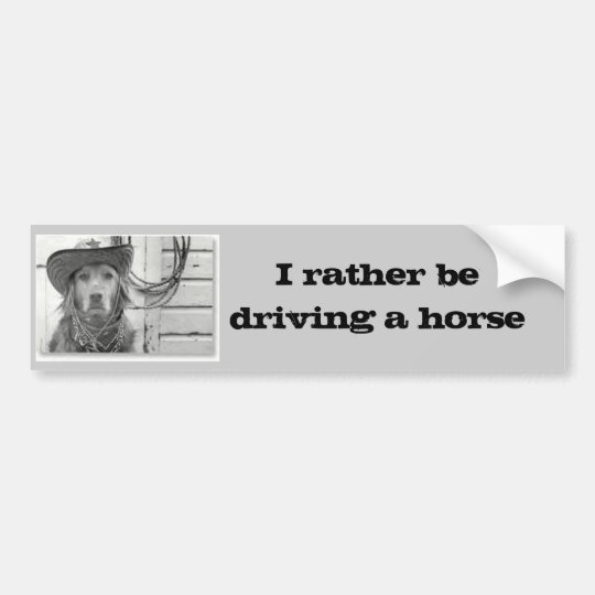 Golden Retriever Driving A Horse  Bumper Sticker