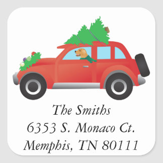 Golden Retriever Driving car with Christmas tree Square Sticker