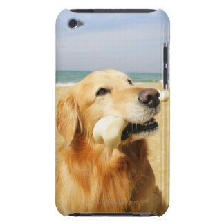 Golden Retriever eating bone iPod Touch Cases