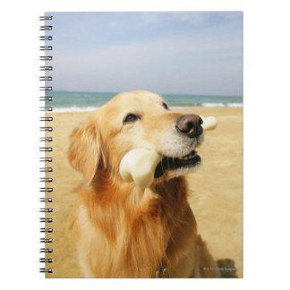 Golden Retriever eating bone Notebook