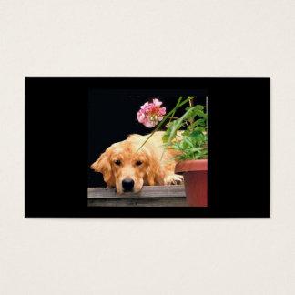 Golden Retriever Flower Girl Breeder Business Card