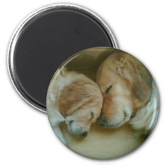 Golden Retriever Fridge Magnet