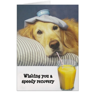 Golden Retriever Get Well Card