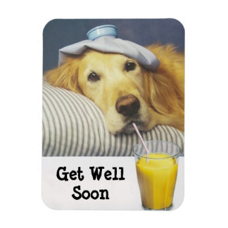 Golden Retriever Get Well Flexible Magnet