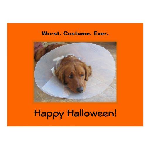 Golden Retriever Halloween Postcard