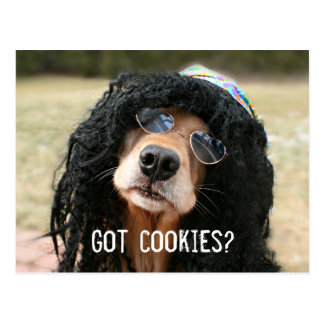 "Golden Retriever Hippie ""Got Cookies?"" Postcard"