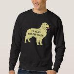 Golden Retriever I'M IN MY GOLDEN YEARS Sweatshirt