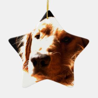 Golden Retriever In Sunlight Christmas Ornament