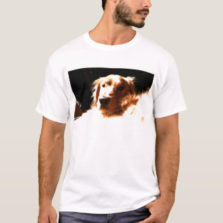Golden Retriever In Sunlight T-Shirt