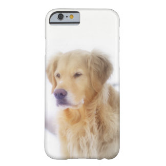 Golden Retriever in the Snow Barely There iPhone 6 Case