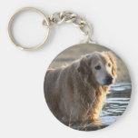 Golden Retriever in Water Keychain