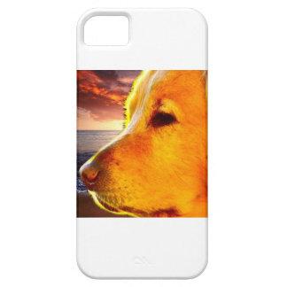 Golden Retriever iPhone Case iPhone 5 Case