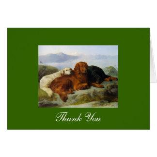 Golden Retriever, Irish & Gordon Setter Thank You Card