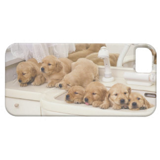 Golden Retriever; is a relatively modern and 2 Barely There iPhone 5 Case