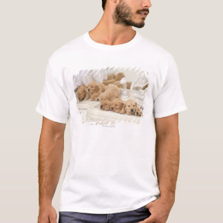 Golden Retriever; is a relatively modern and 2 T-Shirt