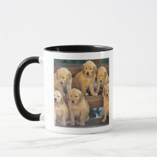 Golden Retriever; is a relatively modern and Mug