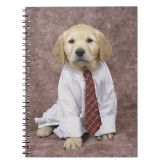 Golden Retriever; is a relatively modern and Note Books