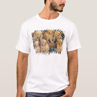 Golden Retriever; is a relatively modern and T-Shirt