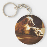 Golden Retriever Keychain With Cat