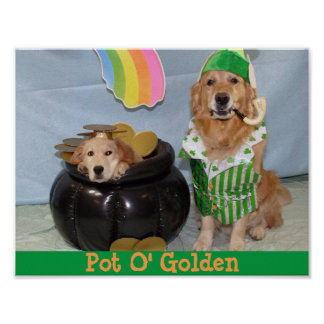Golden Retriever Leprechaun's Pot of Golden Poster