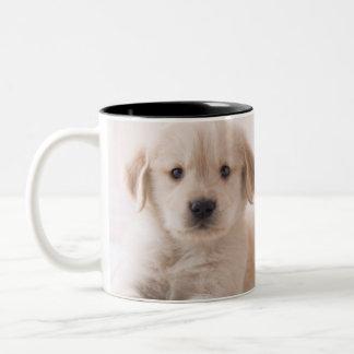 Golden Retriever Lying Down Two-Tone Coffee Mug
