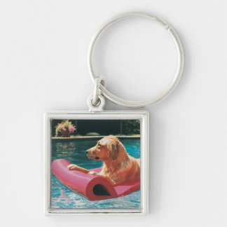Golden Retriever Lying on an Air Bed in a Silver-Colored Square Key Ring