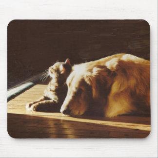 Golden Retriever Mousepad Cat Best Buddies
