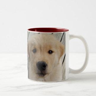 Golden retriever MUG pup