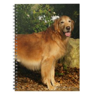 Golden Retriever Panting Spiral Note Book