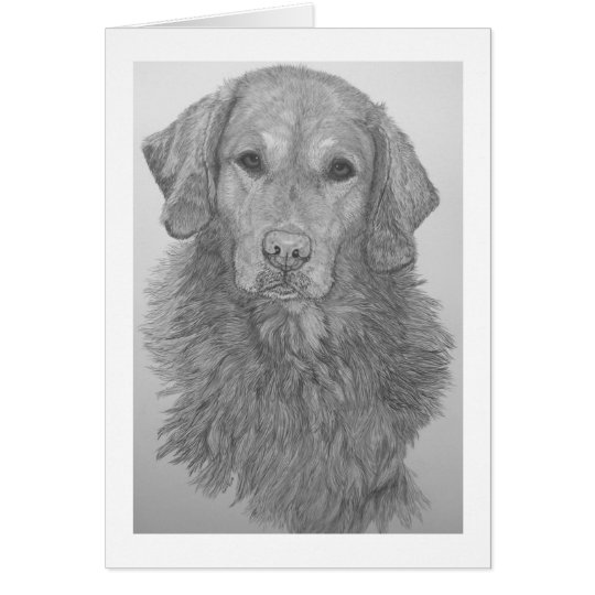 Golden Retriever Pencil Art Notecard
