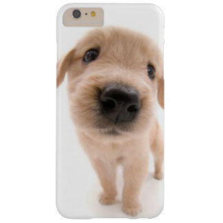 Golden Retriever Phone Case Barely There iPhone 6 Plus Case