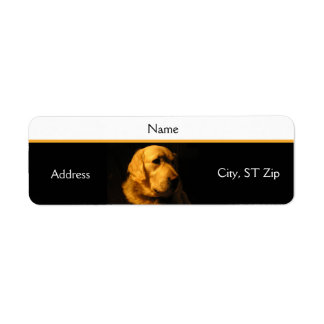 Golden Retriever Portrait Address Label