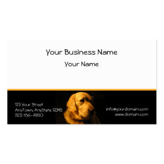 Golden Retriever Portrait on Black with Gold Business Card Template