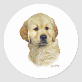 Golden Retriever Pup Classic Round Sticker