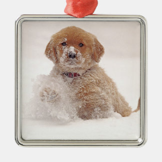 Golden Retriever Pup in Snow Christmas Ornament