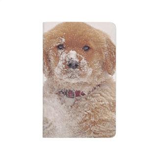 Golden Retriever Pup in Snow Journals