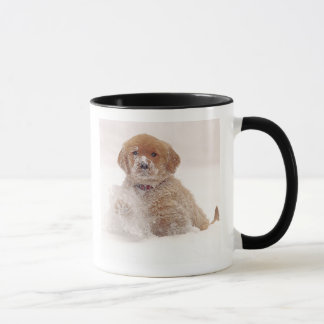 Golden Retriever Pup in Snow Mug