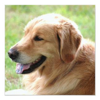 """Golden Retriever Pup Invitations 5.25"""" Square Invitation Card"""