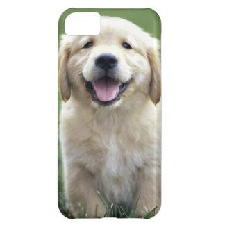 Golden Retriever Pup iPhone Case iPhone 5C Case
