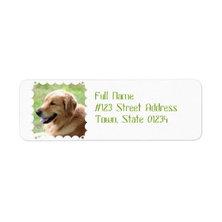 Golden Retriever Pup Mailing Labels