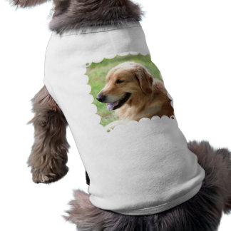 Golden Retriever Pup Pet Shirt